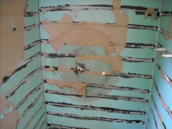 Shower Waterproofing - What you really need to know